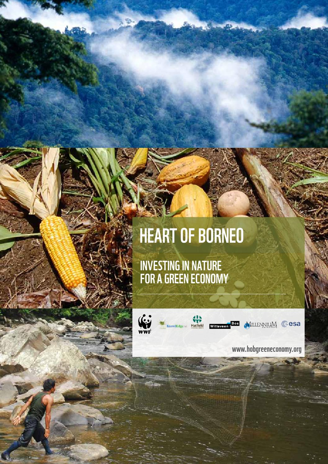 Heart Of Borneo Investing In Nature For A Green Economy Main