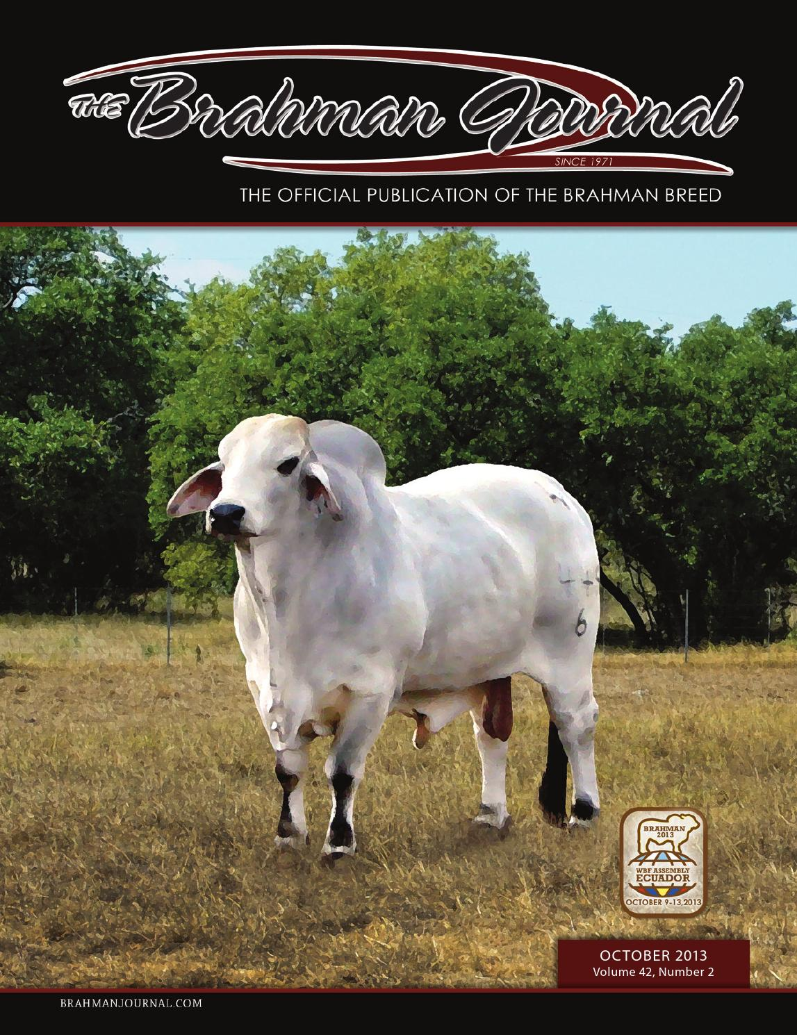 the brahman journal vol issue feb by caballo rojo the brahman journal vol 42 issue 6 feb 2014 by caballo rojo publishing the brahman journal issuu