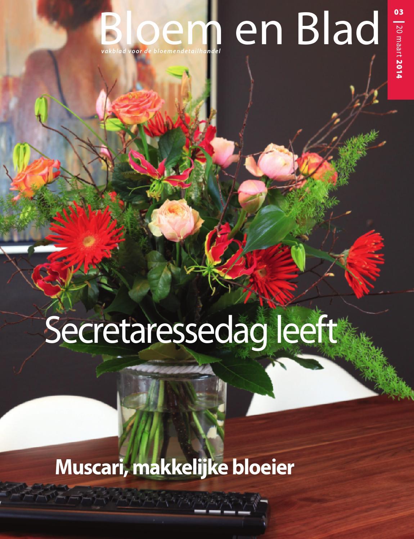 BEB_02-2015 by Stichting Vakinformatie Siergewassen - issuu