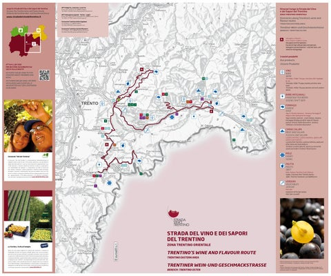 Mappa Trentino Orientale Strada Vino Trentino