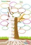 Vlinderwijs Talentenboom