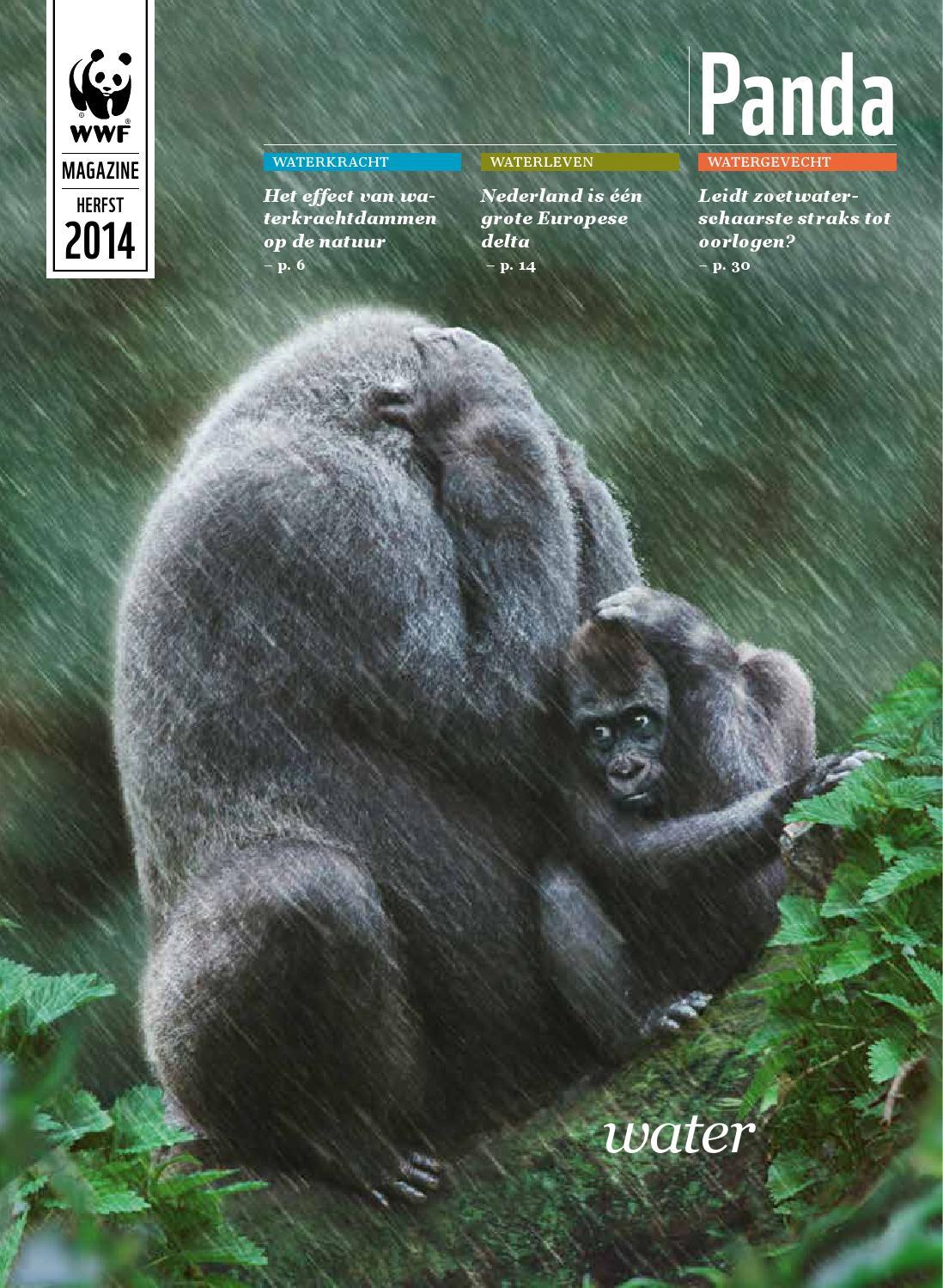Panda herfst 2014 by Wereld Natuur Fonds   issuu