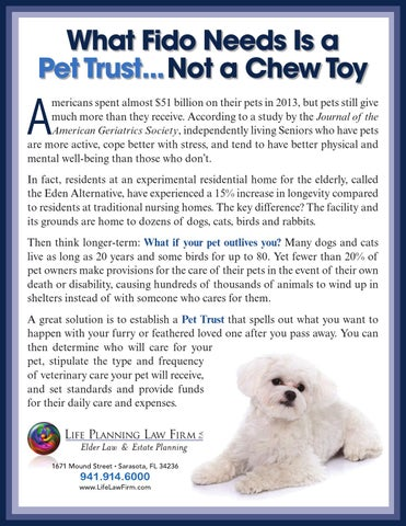 What Fido Needs is a Pet Trust...Not a Chew Toy