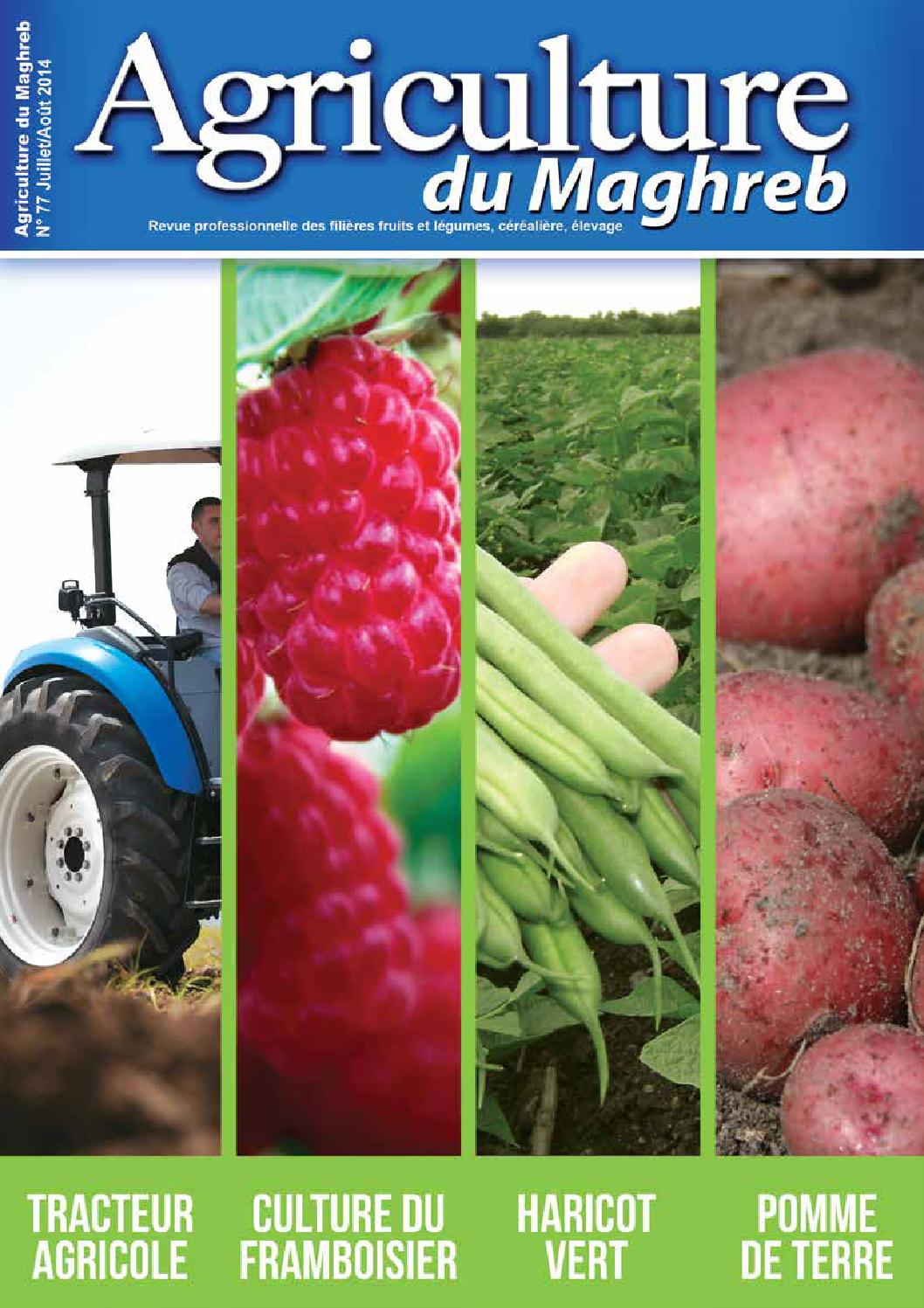 Agrimag 80 by agriculture maghreb   issuu