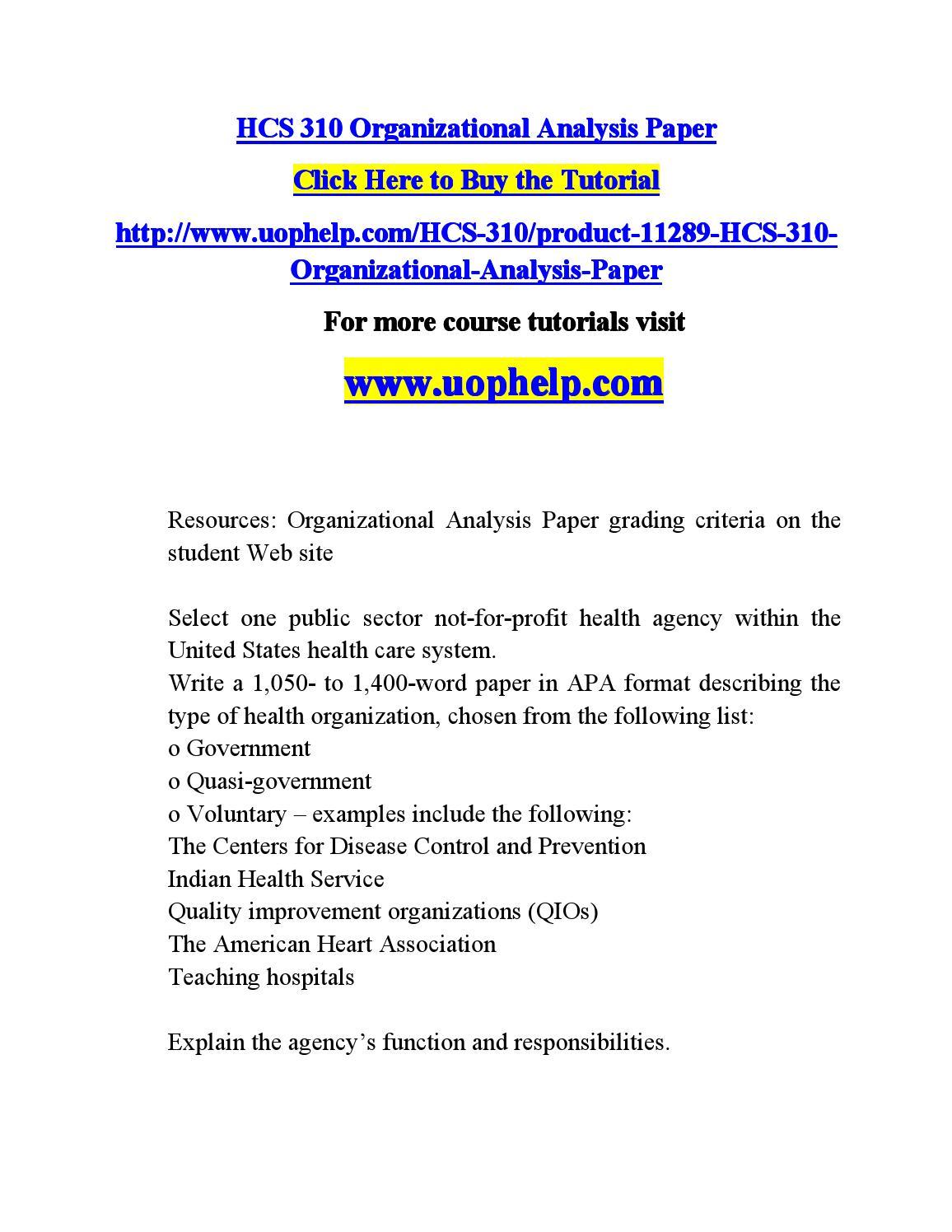Organizational analysis paper