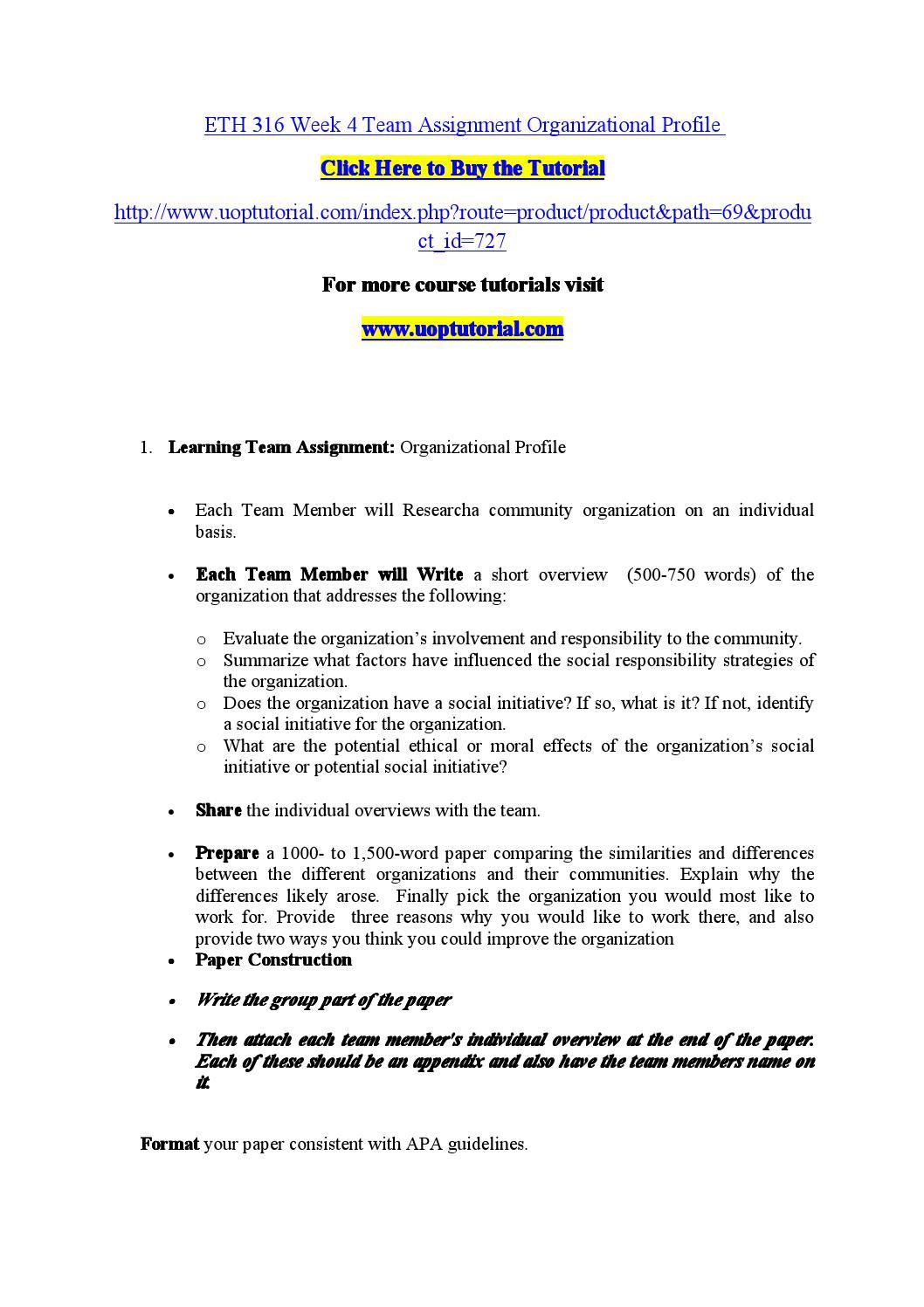organizational profile eth 316