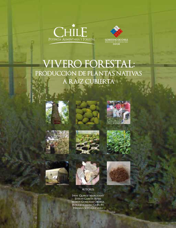 Vivero forestal produccion de plantas nativas a raiz for Materiales para un vivero