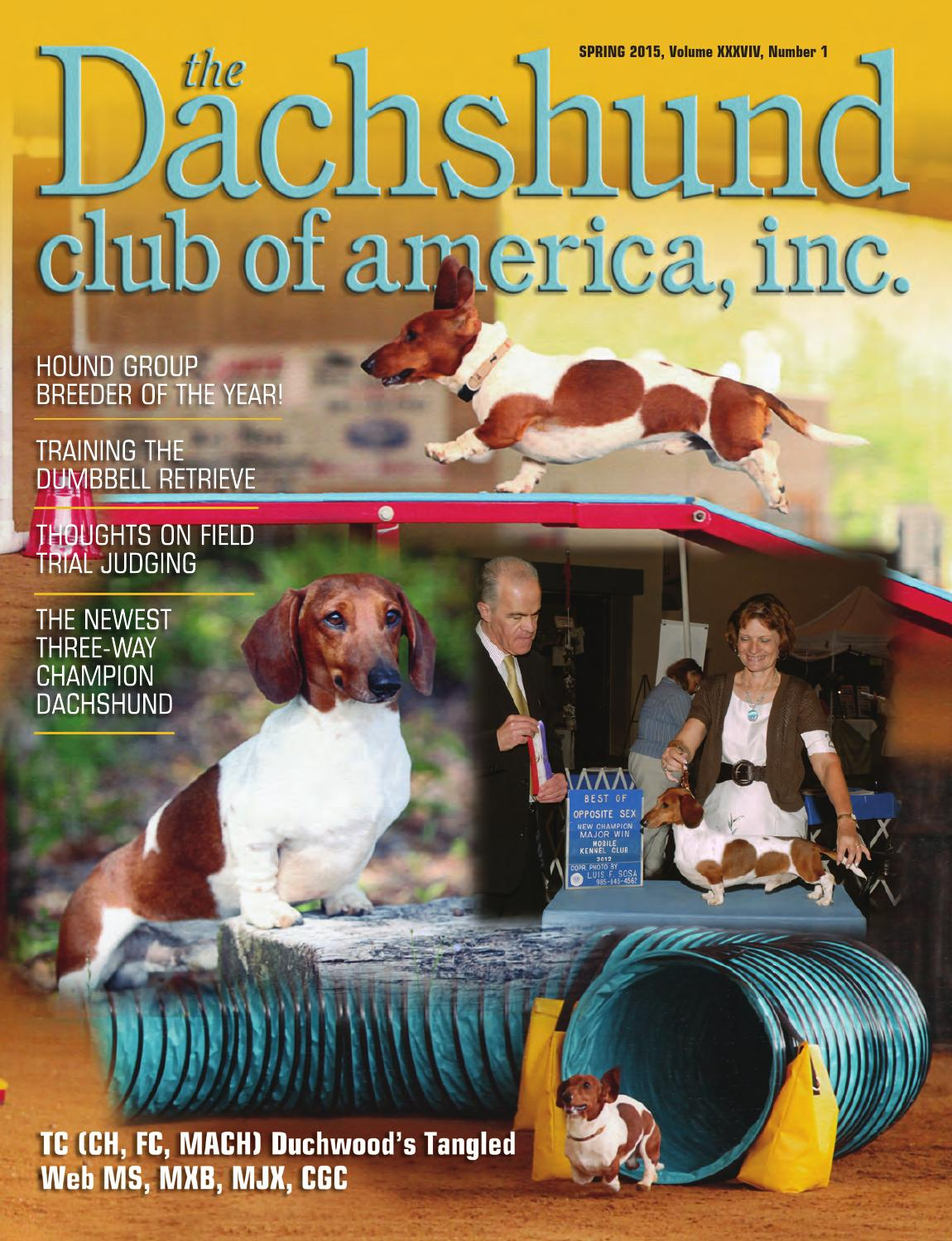 DCA Newsletter Autumn 2011 by Lynne Dahlen - issuu
