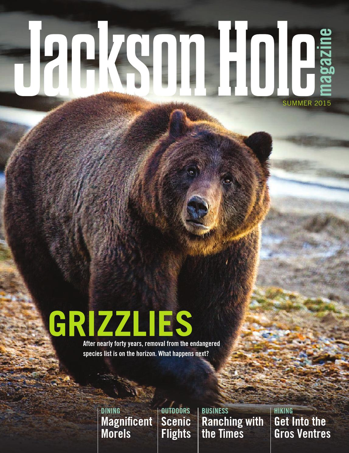 grizzly man essay Check out our top free essays on timothy treadwell to help you write your own essay brainiacom join now grizzly man critical essay.