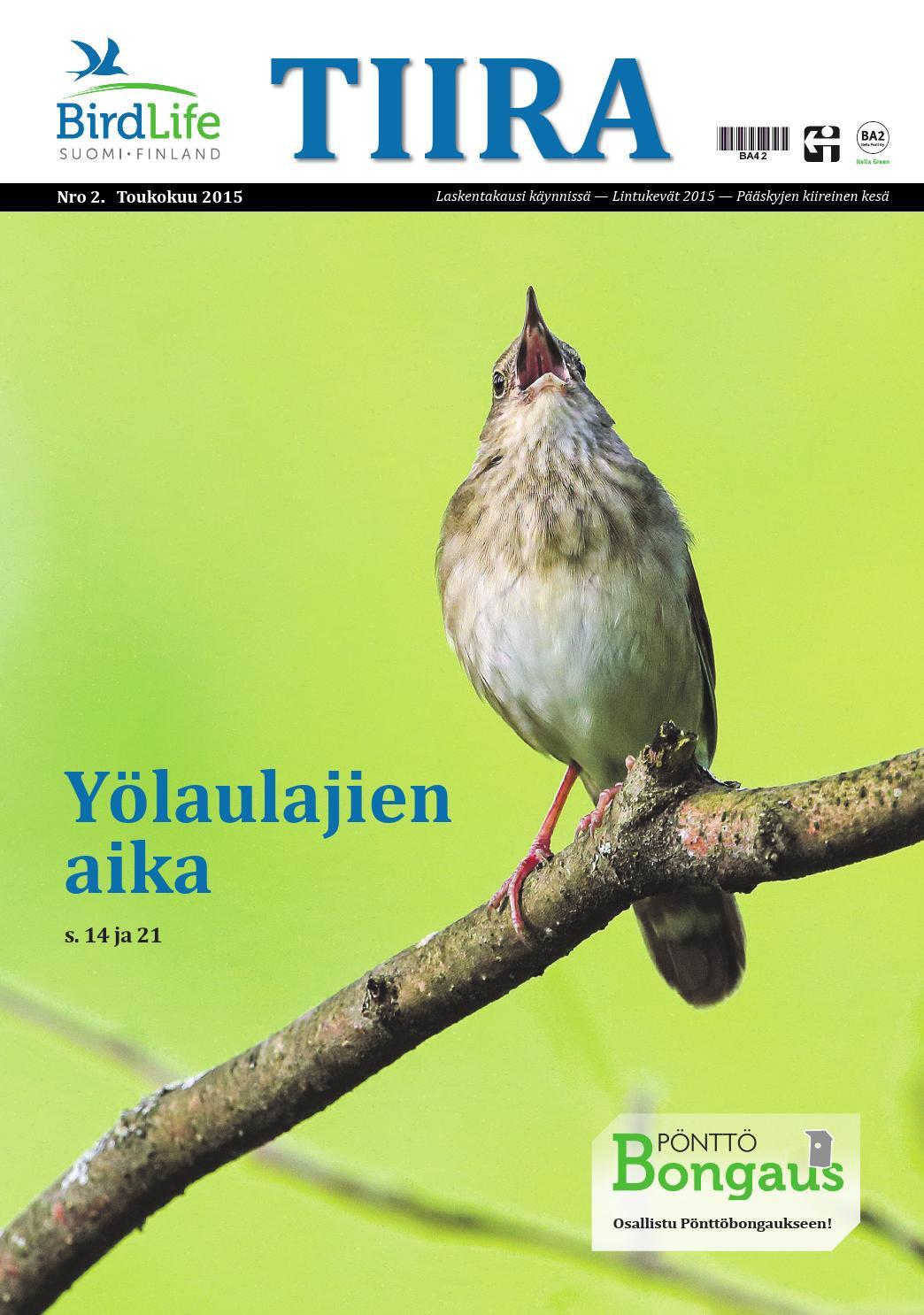 Tiira 2/2015 by BirdLife Suomi - issuu