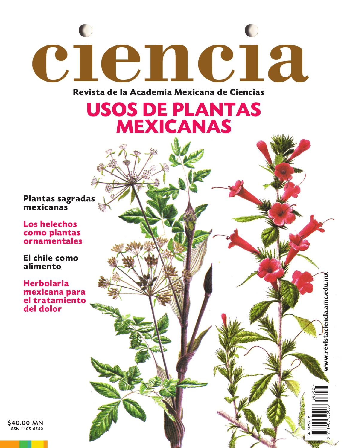 Revista Ciencia vol663 by Academia Mexicana de Ciencias  issuu