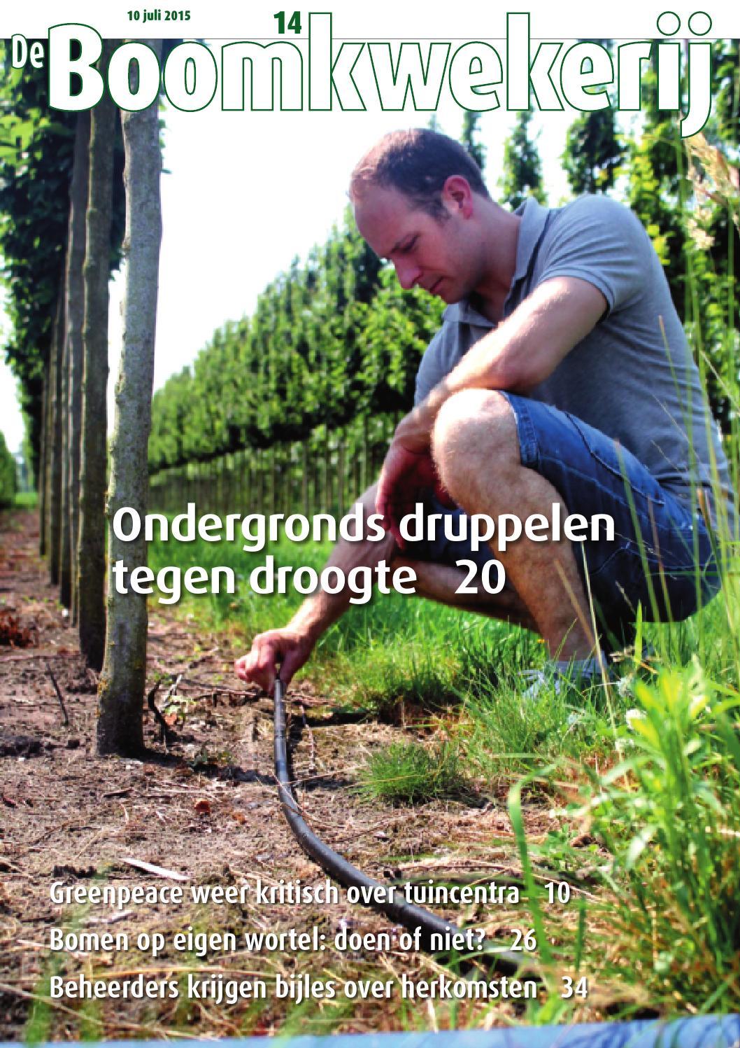 Boomkwekerij 36 2013 by Stichting Vakinformatie Siergewassen - issuu