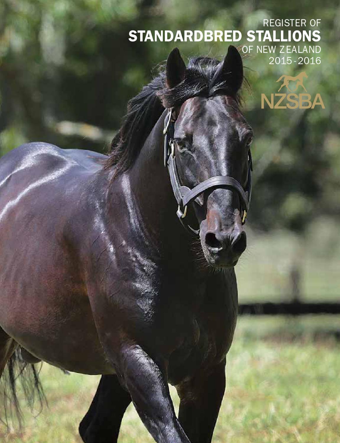 Ebony Stallions 80