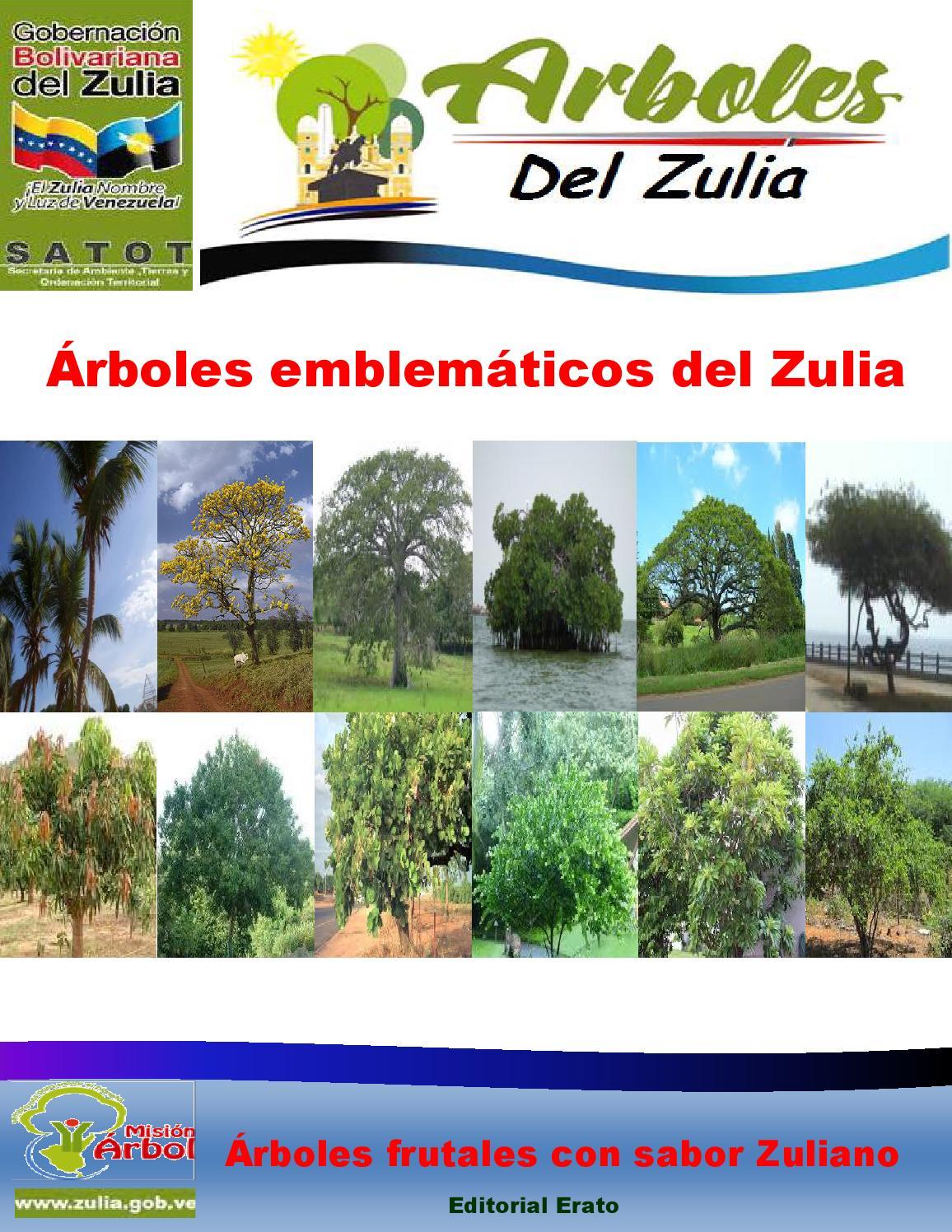 Rboles emblem ticos del zulia by secretaria de ambiente for Se puede pintar el marmol