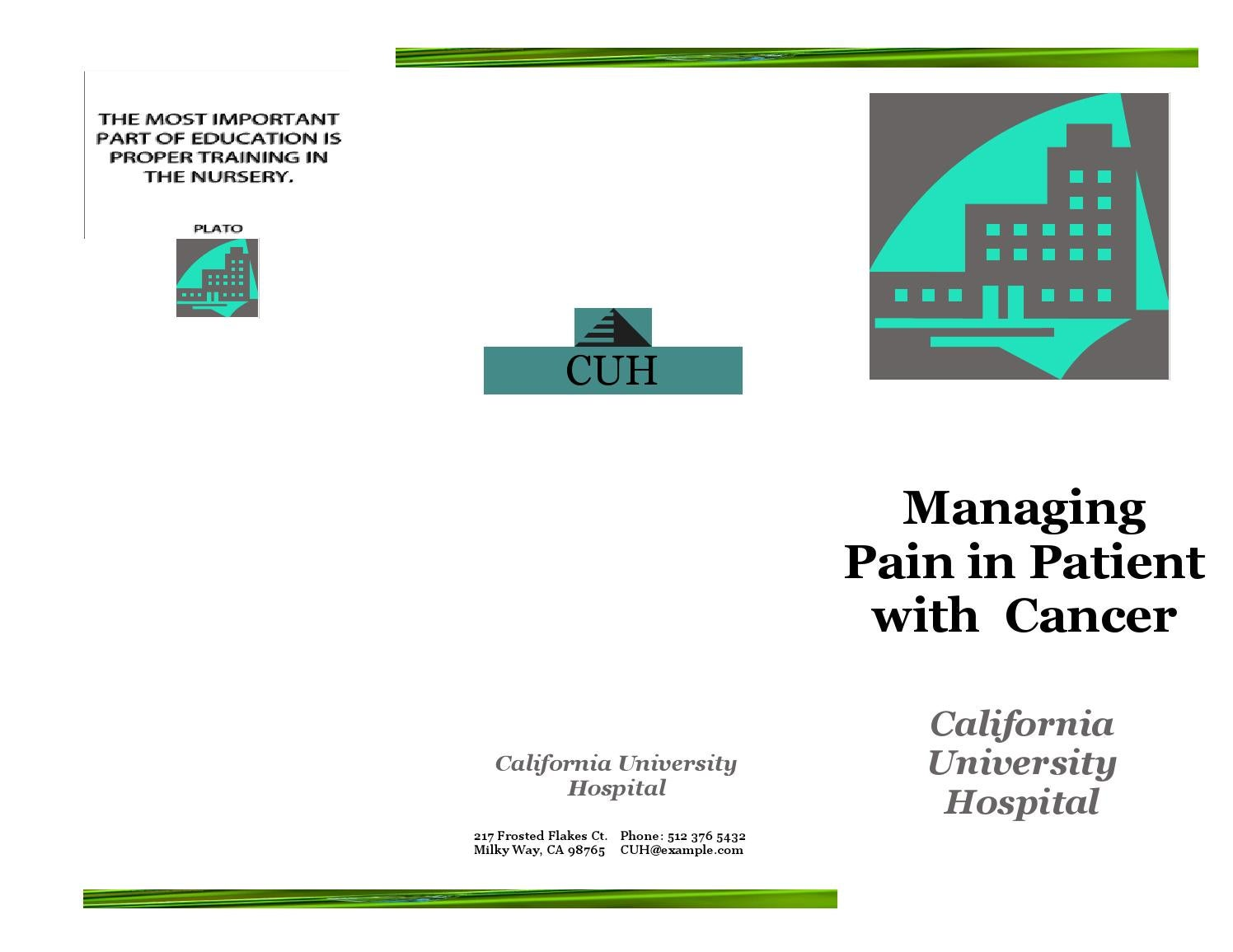 Pain Management Pamphlet By California State University San Marcos Issuu