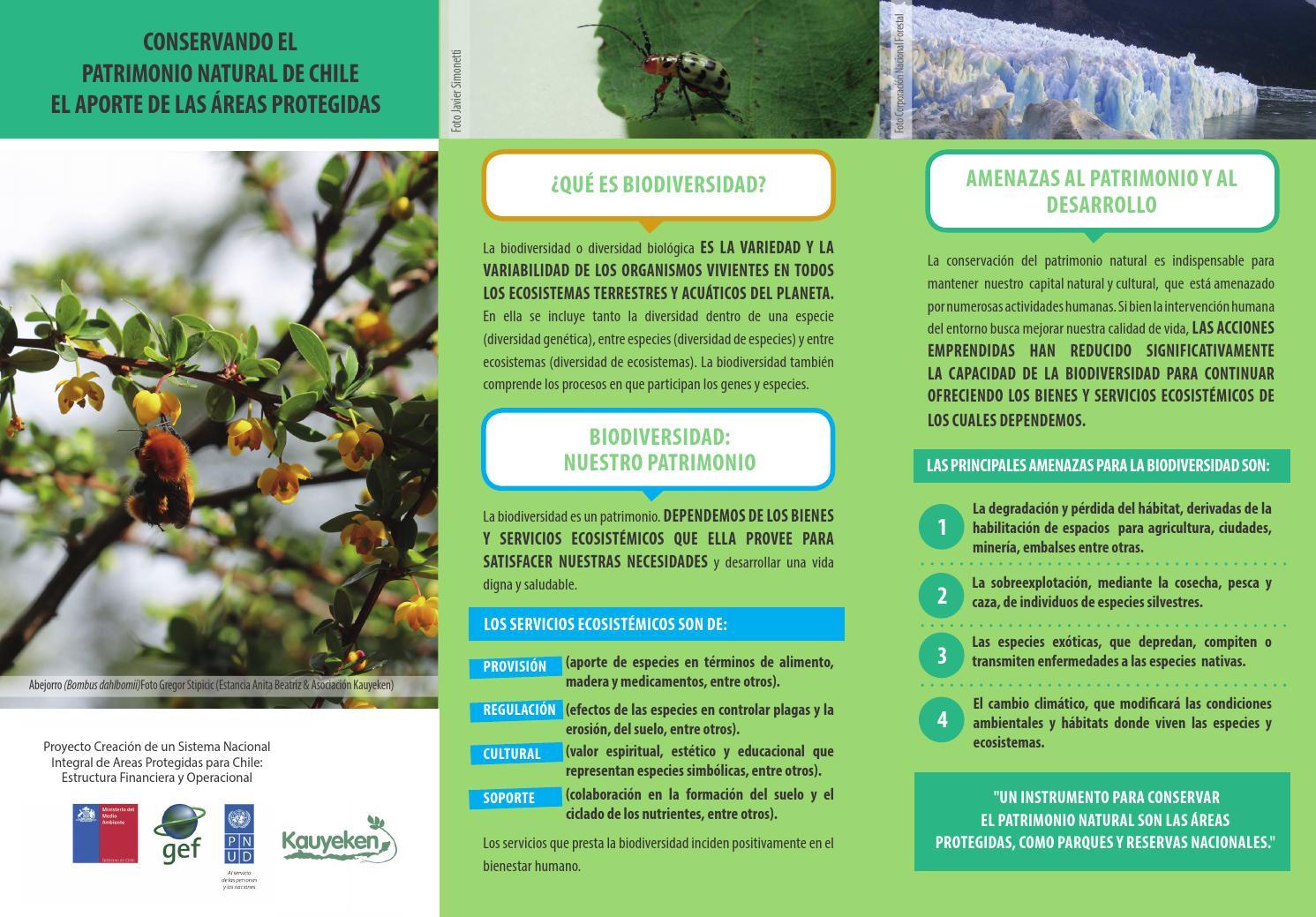 tr237ptico quotconservando el patrimonio natural de chile el
