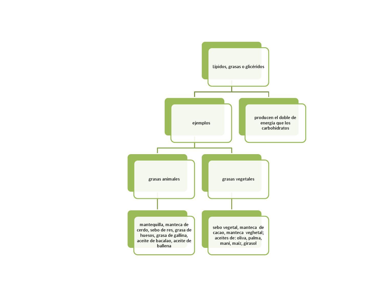 Mapas Conceptuales De Lipidos By Quimico Loco Issuu
