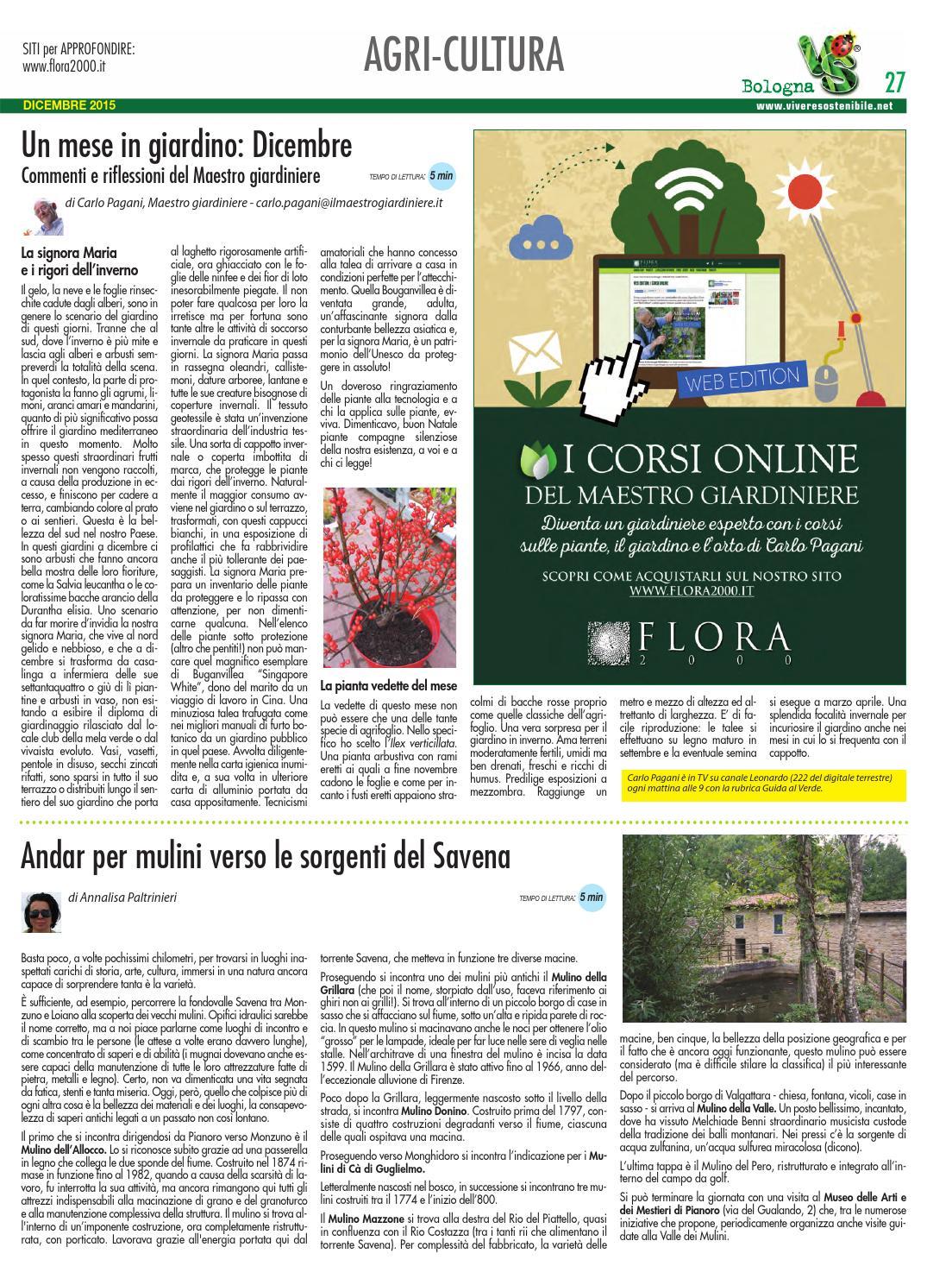 Vivere sostenibile a bologna n 23 dicembre 2015 by edibit for Giardiniere bologna