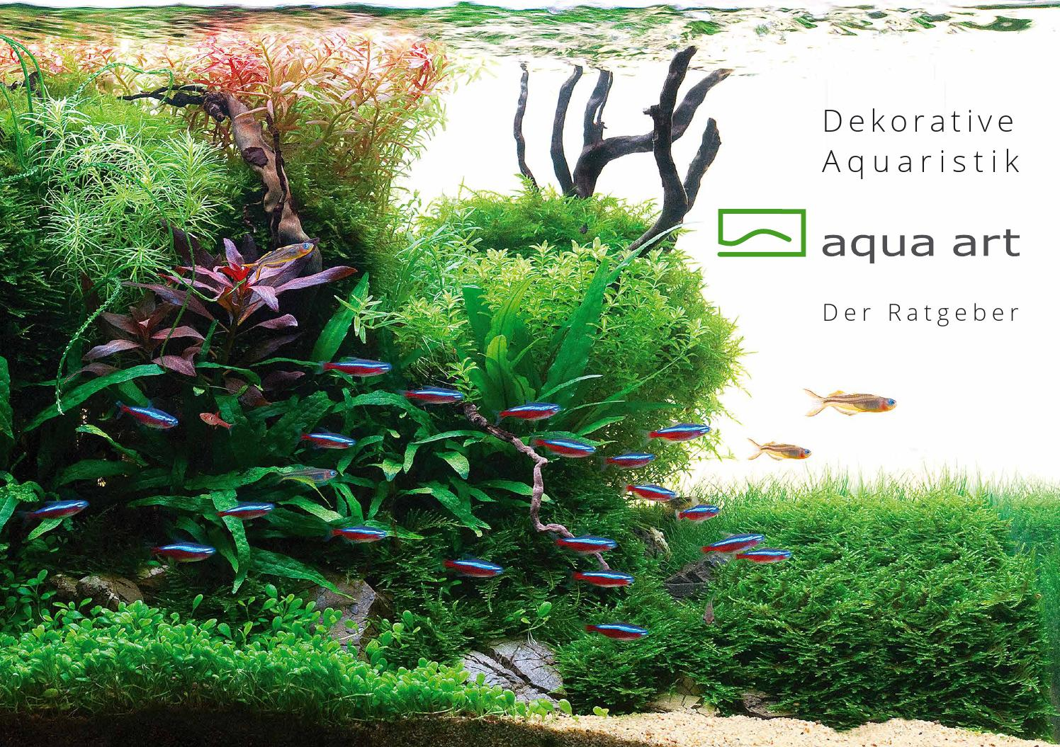 De ornamental aquarium   ratgeber aqua art® by aqua art   issuu