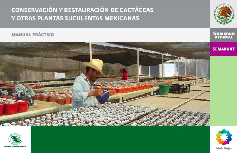 Manual practico conservacion y restauracion cactaceas for Cactaceas y suculentas