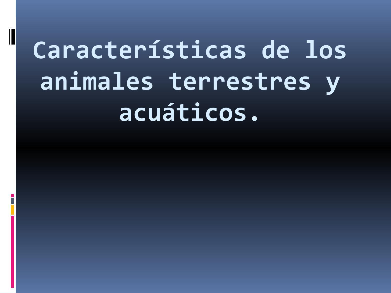 Caracter sticas de los animales terrestres y acu ticos by for Los arboles y sus caracteristicas
