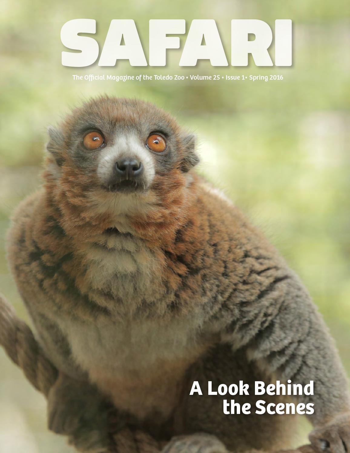 spring safari by safari magazine the toledo zoo issuu