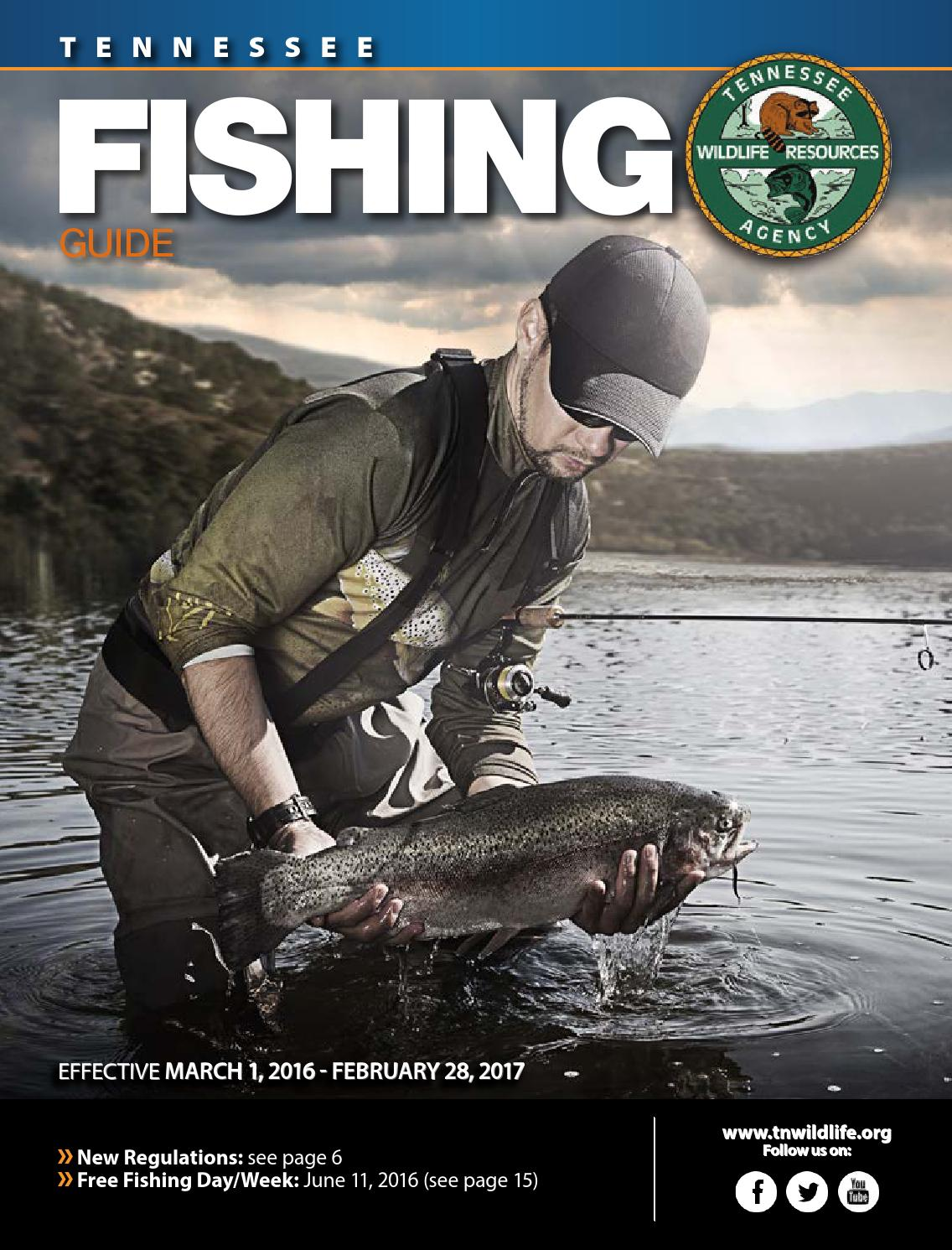 Tn fishing guide 2016 2017 by bingham group page 1 issuu for Tennessee fishing guide