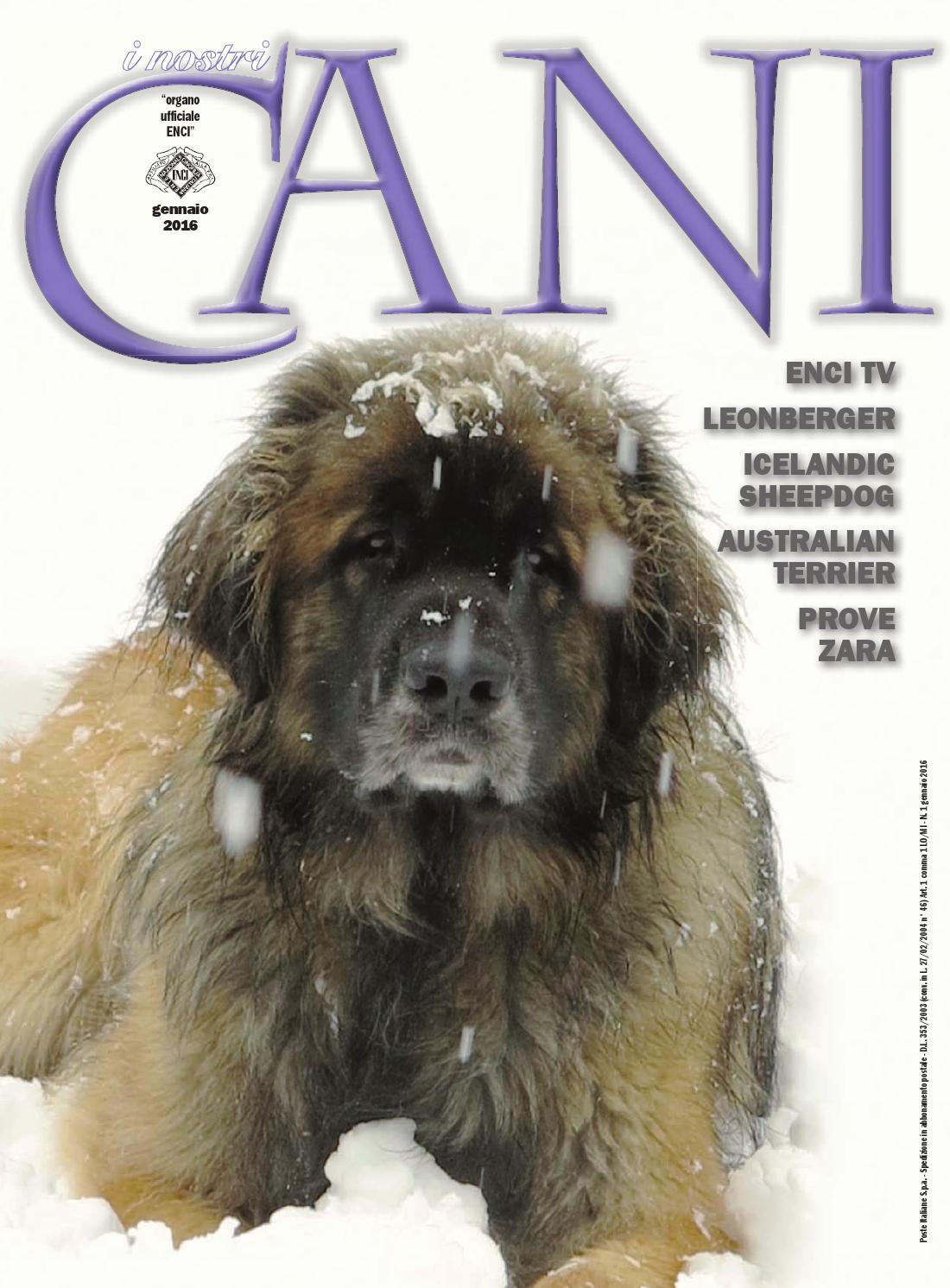 I Nostri cani - gennaio 2016 by ENCI - Ente Nazionale Cinofilia ...