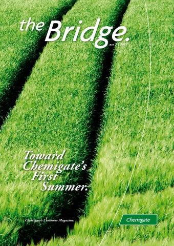 CHG_Bridge_2011-1_en