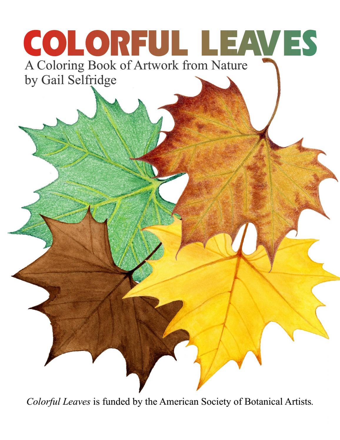 Botanical art coloring book - Botanical Art Coloring Book 11