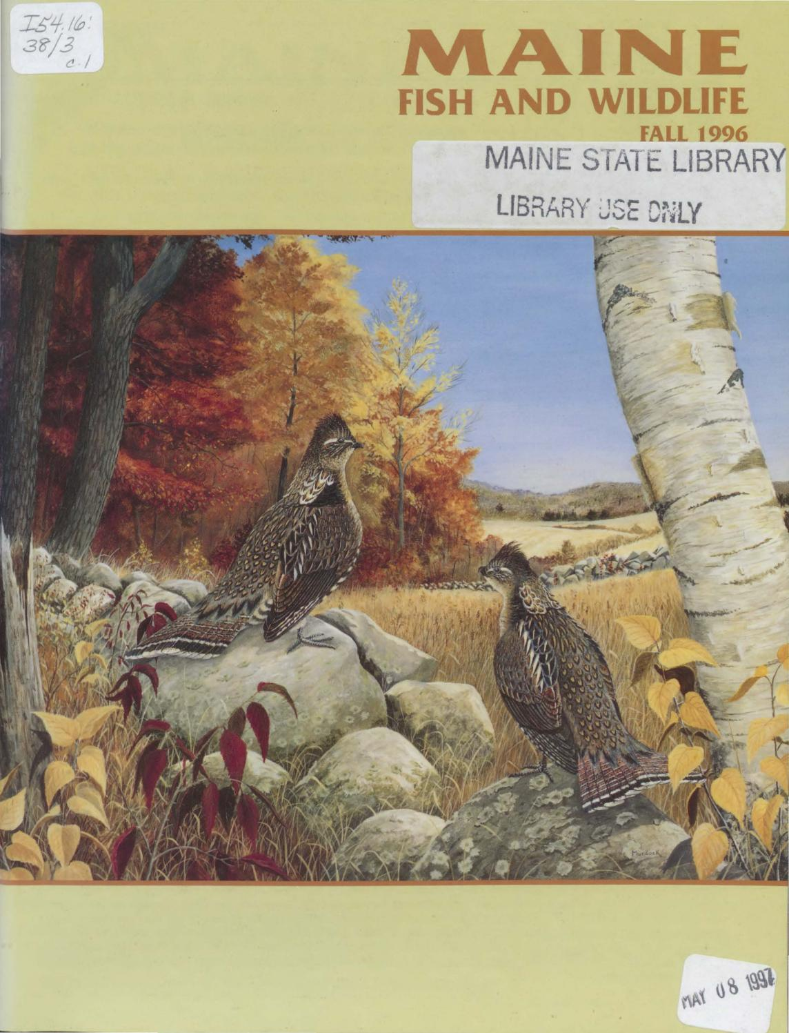 maine fish and wildlife magazine fall 1996 by maine state
