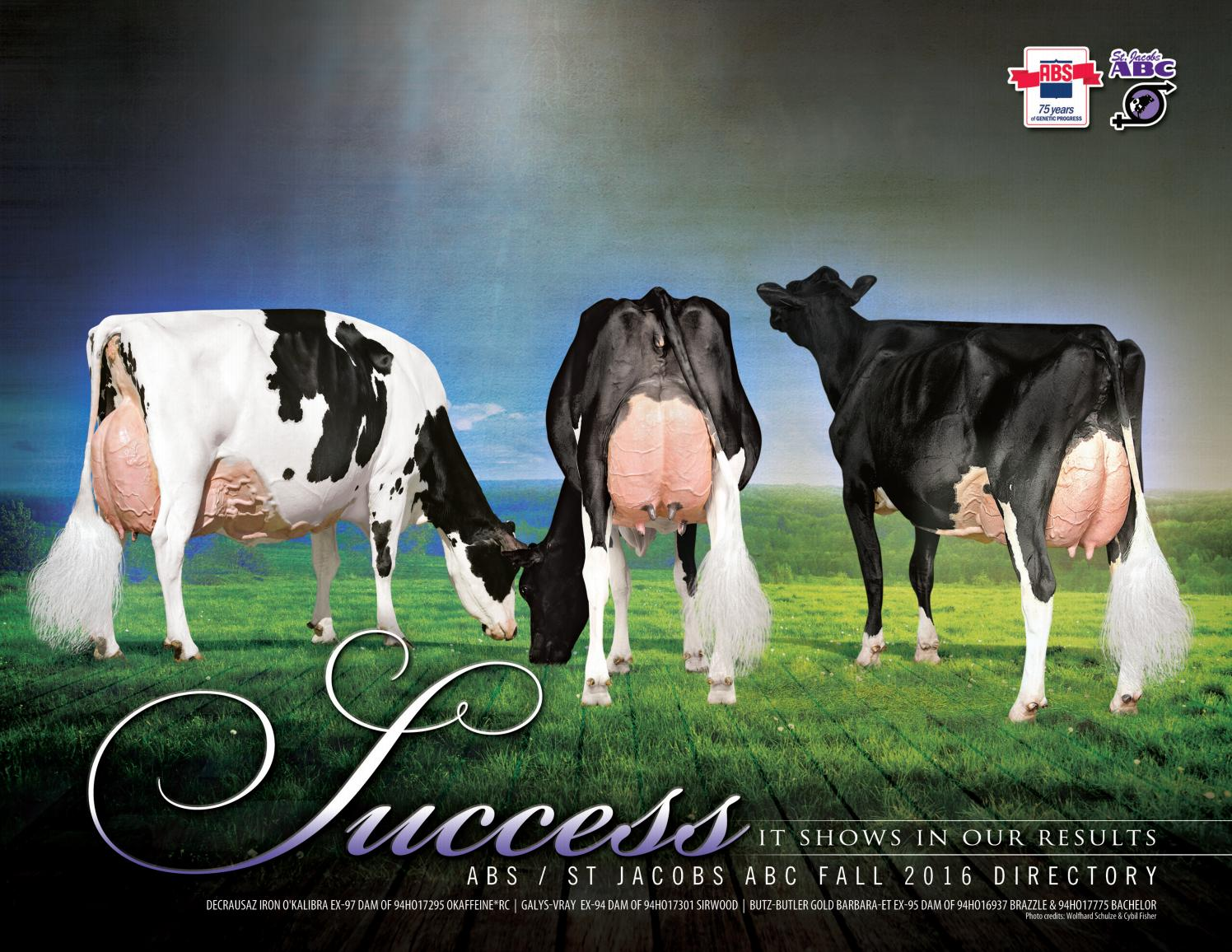 Fall 2016 abs st jacobs abc sire directory by abs global for Abc salon sire directory