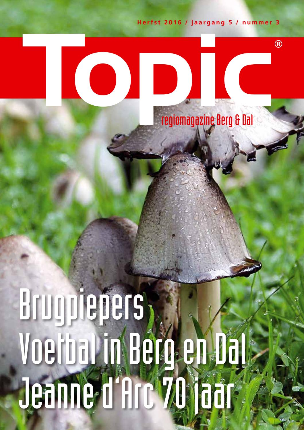 Topic berg en dal zomer 2016 by remi van bergen   issuu