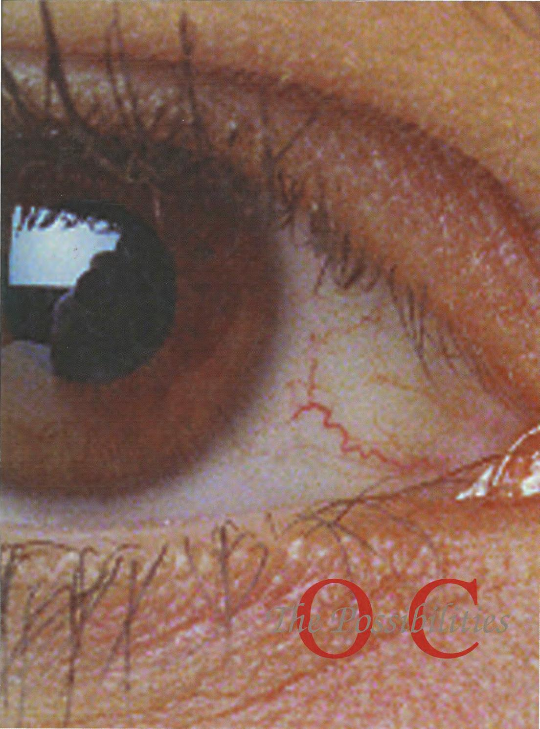 Sibyl 1996 by otterbein university   issuu