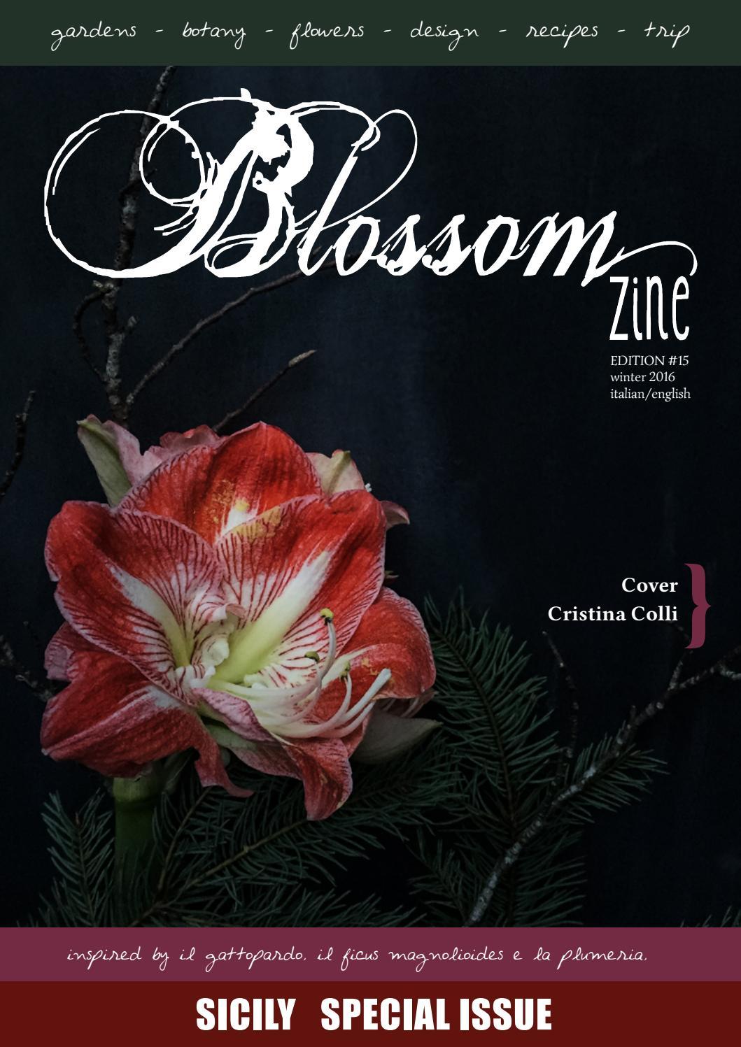 N 14 Autumn 2016 Blossom zine by Blossom zine - issuu