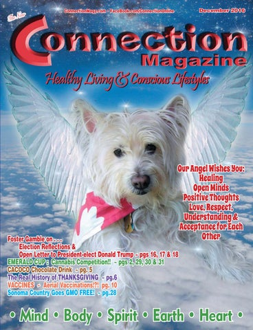 Connection Magazine December 2016 Issue