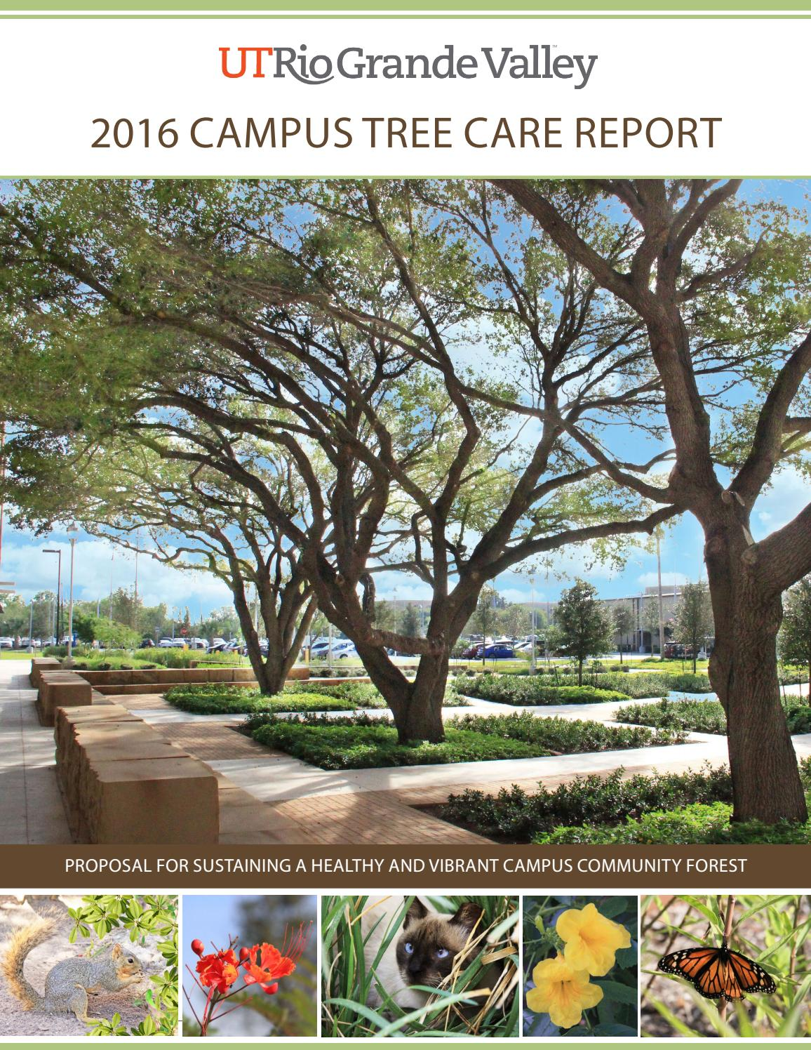 Utpa resume help University of Texas Rio Grande Valley