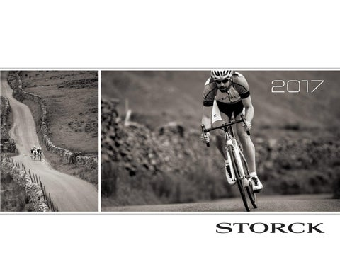 Storck bikes 2017