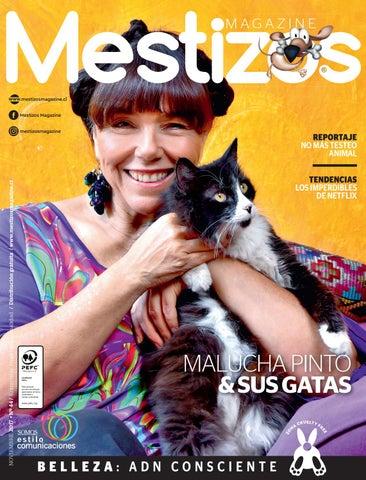 mestizos 44