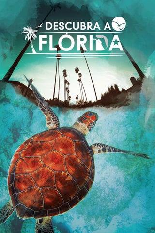 Segunda capa - Descubra a Flórida - Novembro