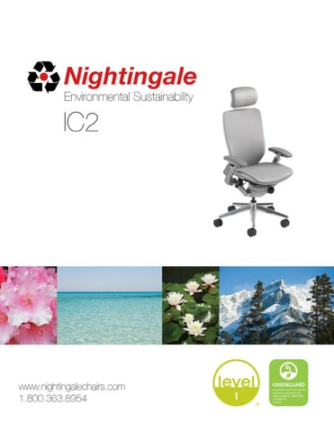 Nightingale - Environment IC27300
