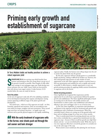 Choosing the right fungicide
