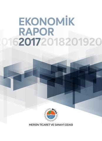 2017 Yılı Ekonomik Raporu