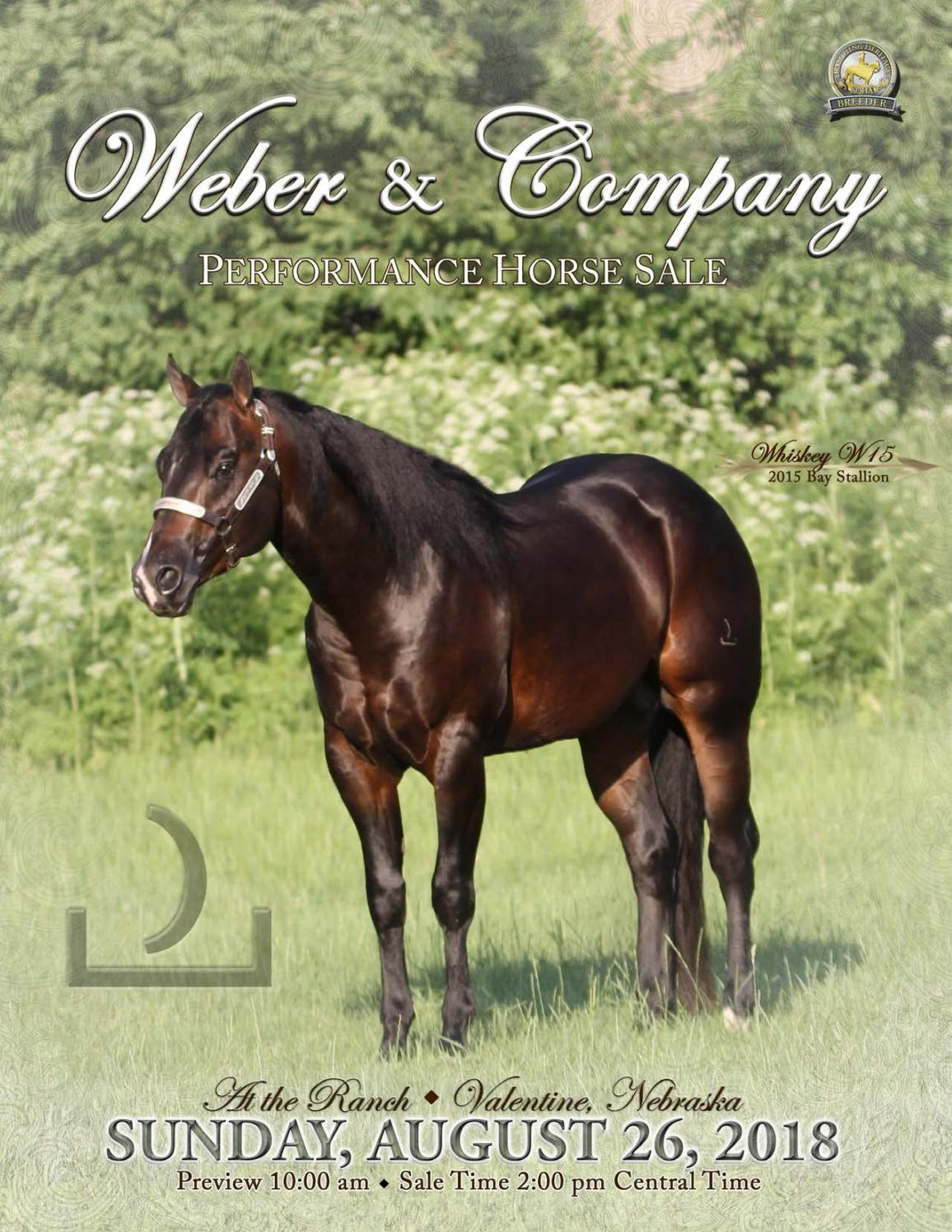 Weber Quarter Horses - 2018 Sale Catalog     - LivestockDirect