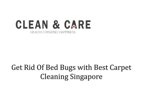 Get Rid of Bed Bugs with Best Carpet Cleaning Singapore