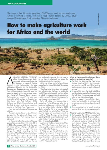 How to make agriculture work for Africa and the world