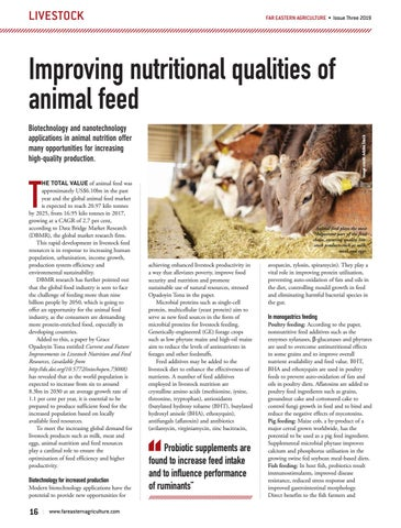 Improving nutritional qualities of animal feed