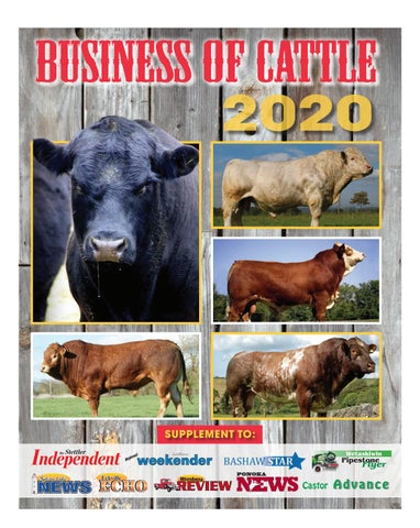 Business of Cattle 2020