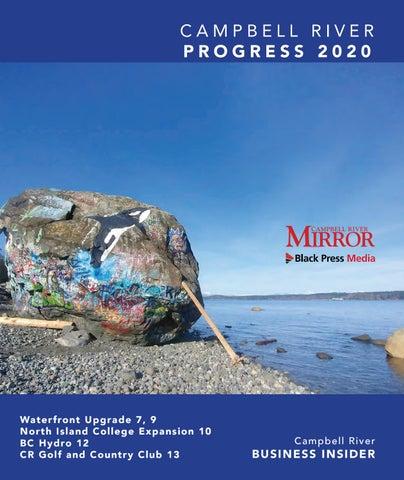 Progress 2020