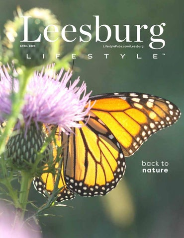 Leesburg Lifestyle 2020-04